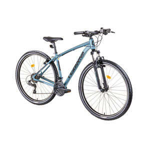 "Horský bicykel DHS Teranna 2923 29"" - model 2019 Light Blue - 18"""
